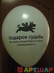 Логотип на шарике